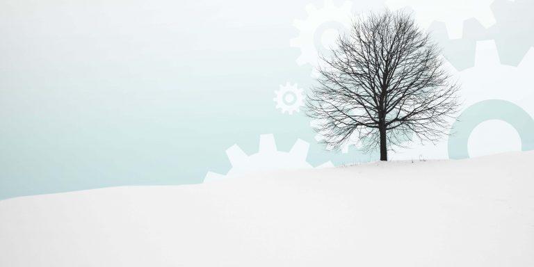 Winter 21 Banner
