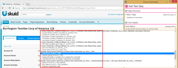 Image shows mapping Skuid pages and fields being recognized automatically.